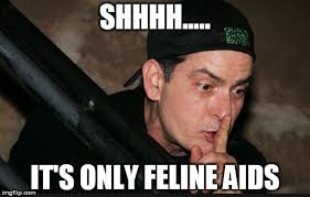 Charlie Sheen Memes - image tagged in charlie sheen aids imgflip