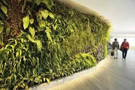 living wall garden qantas first class lounge entrance sydney