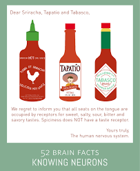 sriracha bottle clipart myth or fact spice receptors on your tongue allow you to taste