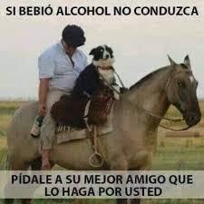 imagenes graciosas de amigos borrachos imagenes y frases graciosas de borrachos y del alcohol humor