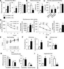 Descargar Design Home 1 00 The X Linked Intellectual Disability Protein Il1rapl1 Regulates