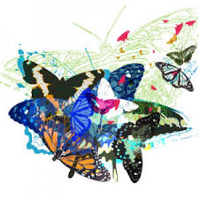 butterfly 145 free vectors to freevectors
