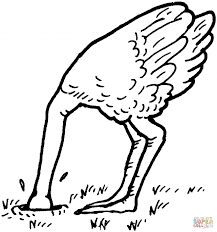 climate change for you me and an ostrich too u2014 new harmony high