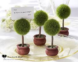small potted plants tiny potted plants home design ideas and pictures
