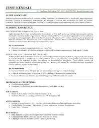 Extensive Resume Sample by Resume