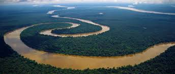 amazon basin 5 facinating facts about the amazon rainforest top5s