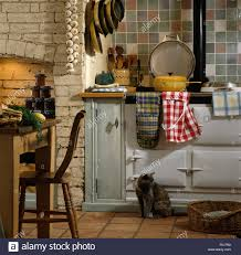 cat sitting beside white aga oven with a red checked apron in a