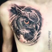 owl chest best ideas gallery