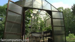 backyard aquaponics diy system to farm fish with vegetables youtube