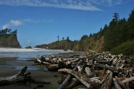 Washington beaches images The washington coast is better than the oregon coast a biased jpg