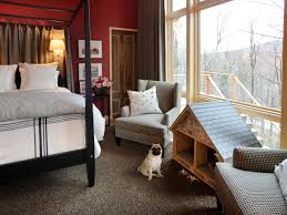 Dog Bedroom Ideas by 19 Awesome Dog Spaces 5 Dog Treat Recipes Hgtv U0027s Decorating
