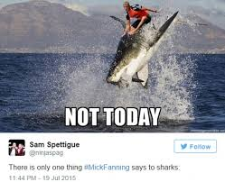 Funny Shark Meme - mick fanning s escape from shark attack pictured in hilarious