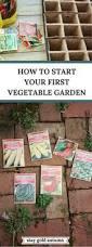 17 clever vegetable garden hacks gardening hacks gardens and