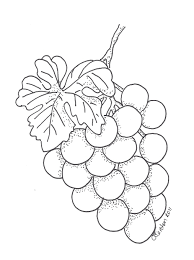 grapes coloring page to print and color coloring pages for kids
