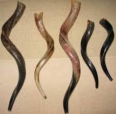 shofar horn for sale services shofar rams kudu horns was listed for r170 00 on 20