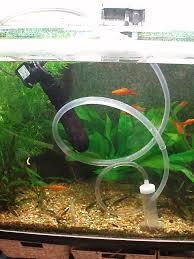 best 25 fish tank for sale ideas on pretty fish