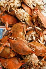 crab feast images u0026 stock pictures royalty free crab feast photos