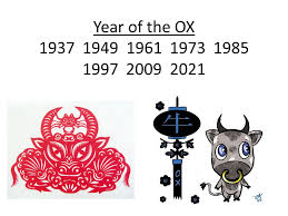year of the ox 1997 zodiac ppt online