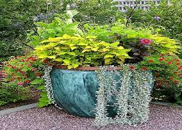 Potted Garden Ideas Garden Container Ideas Potted Plant Ideas Container Gardening For