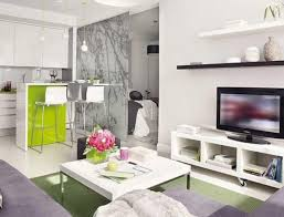 Modern Apartment Plans by Apartments Kitchen A Renovated Cinema Kitchen Luxury Studio