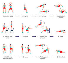 Anatomy And Physiology Exercise 10 Pe Anatomy And Exercise Physiology Scoop It