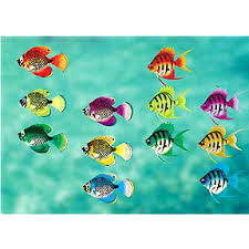 Tropical Themed Party Decorations - fish party decorations birthday party ideas