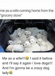 Crazy Dog Lady Meme - me as a wife coming home from the grocery store me as a wife i
