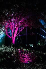 6w color changing rgb led landscape spotlight remote sold