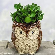 owl decor owl home decor items every owl lover should have