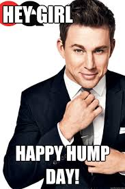 Hump Day Meme Funny - hey girl happy hump day channing tatum finals quickmeme