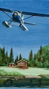 regal air de havilland beaver by alaskan artist bob thompson