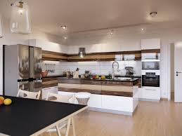 sleek modern kitchen perfect classic modern kitchens home design