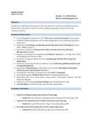 db2 dba resumes india 100 sql resume example 28 dba sample resume