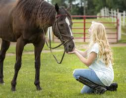 Horse With American Flag A Look At 2018 Senior U0027s Photos Summer U2013 Krystal Scheetz