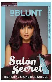 bblunt salon secret high shine creme hair color price in india