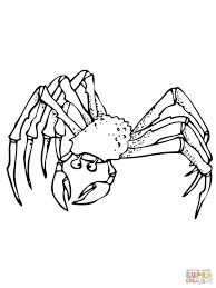 coloring pages animals hermit crab coloring pages printable