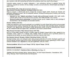 Professional Nursing Resume Examples by Director Online Learning Resume Example
