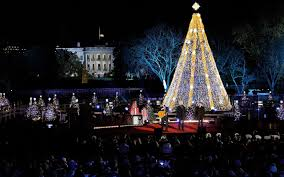 how to watch the national christmas tree lighting at the white