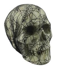 15 5 spooky black spider web lace covered skull