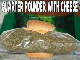 Cheech And Chong Memes - 38 best cheech chong images on pinterest cannabis cheech and