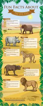facts about the big five infographic signature safaris