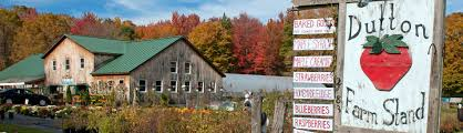 Vermont travel stories images Travel vermont farm stands in vermont ashx