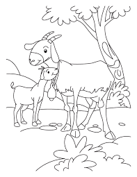 goat kid coloring download free goat kid coloring