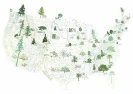 American State Map by Turn Of The Centuries American Homescape States Trees State
