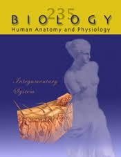 Anatomy And Physiology Midterm Exam Human Anatomy And Physiology Biology 235 Courses Athabasca
