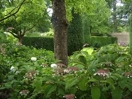 the walled garden at mells