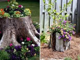 Pictures Of Tree Stump Decorating Ideas Use Old Items In New Interior U2013 19 Decorating Ideas From Tree