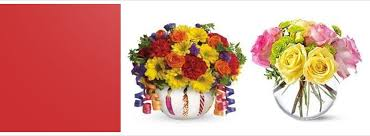 pittsburgh florists plants and flowers by florist pittsburgh pa