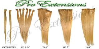 pro extensions pro extensions 20 premium remy clip in real human hair extensions