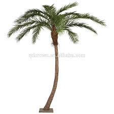 indoor palm indoor potted palm tree indoor potted palm tree suppliers and